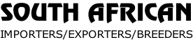 SOUTH AFRICAN IMPORTERS/EXPORTERS/BREEDERS